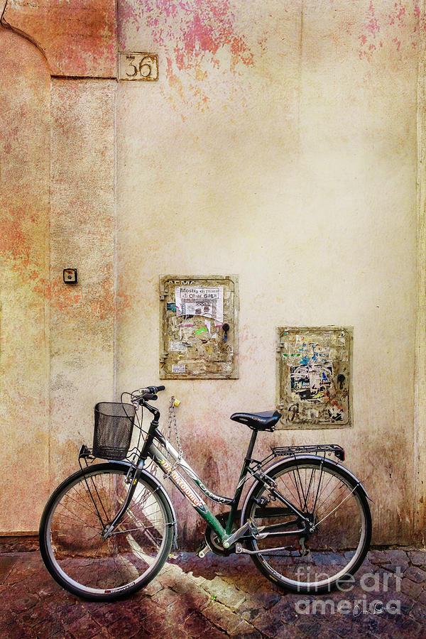 DiBartolomei Bicycle by Craig J Satterlee