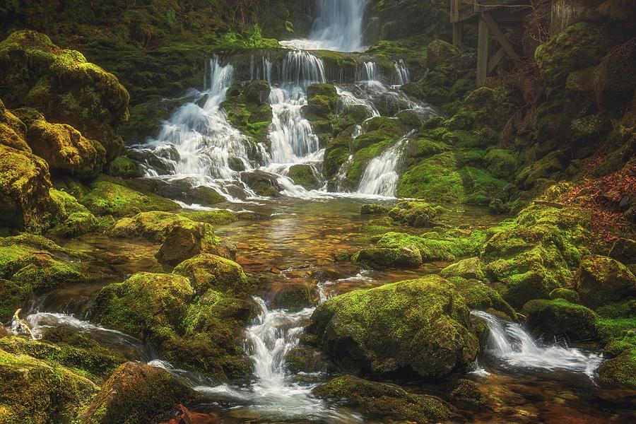 Dickson Falls by Tracy Munson