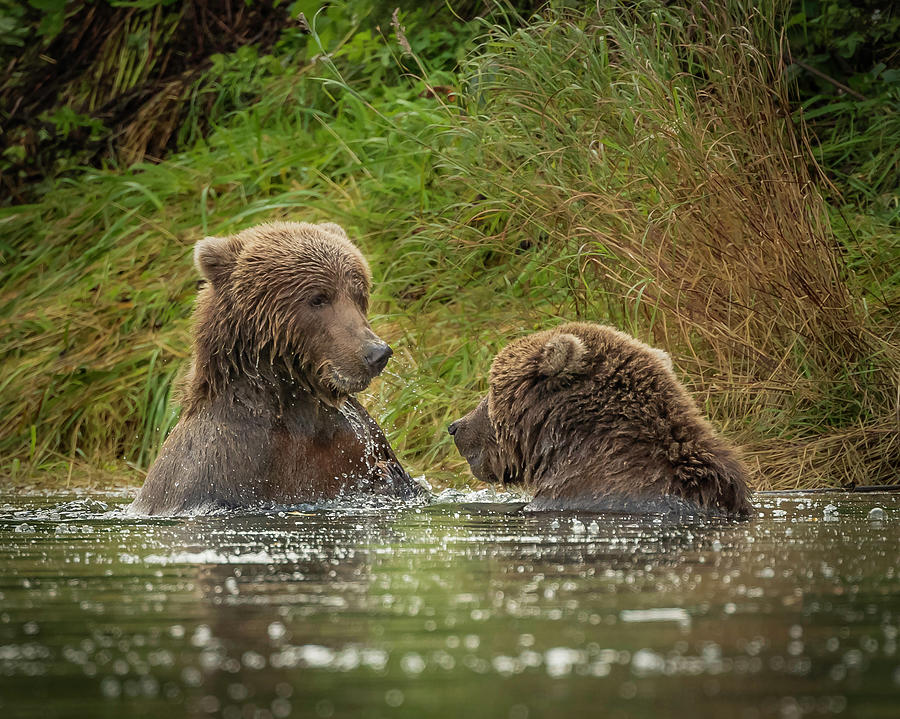 Did You Just Touch Me? by Laura Hedien