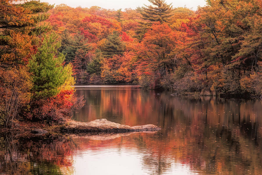 Digial paint of Birch Pond by Jeff Folger