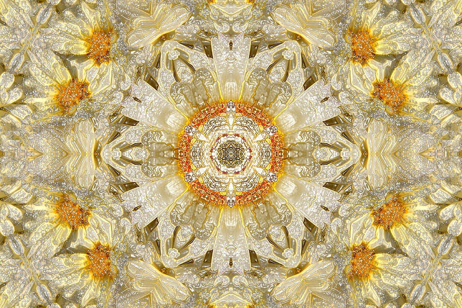 Digital Flora - Purity Digital Art
