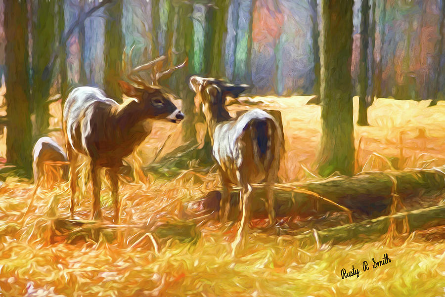 Digital painting of Whitetailed deer pair standing together. by Rusty R Smith