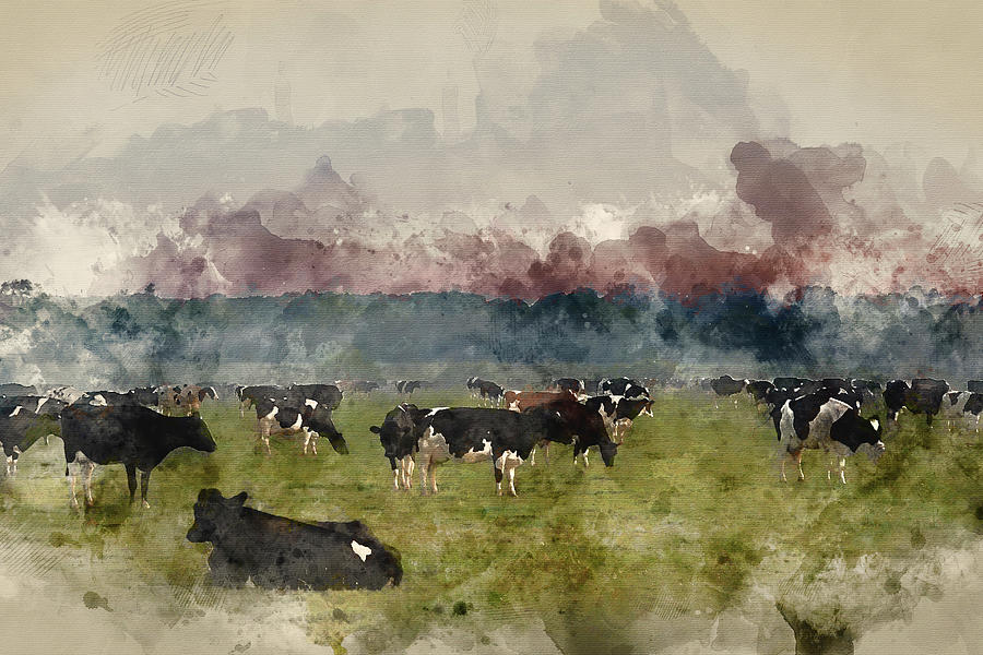 Landscape Photograph - Digital Watercolor Painting Of Cattle In Field During Misty Sunr by Matthew Gibson
