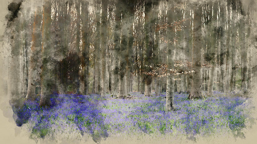 Landscape Photograph - Digital Watercolor Painting Of Stunning Landscape Of Bluebell Fo by Matthew Gibson