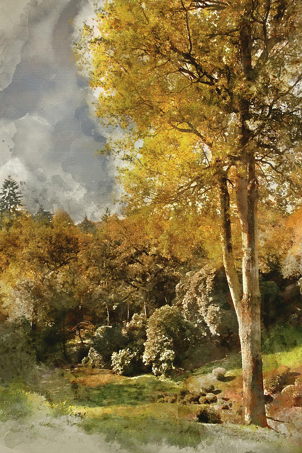 Landscape Photograph - Digital Watercolor Painting Of Stunning Vibrant Autumn Forest La by Matthew Gibson