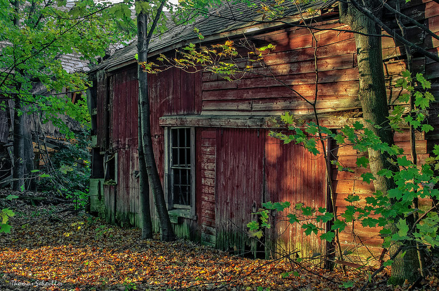 Dilapidated Beauty by T-S Photo Art