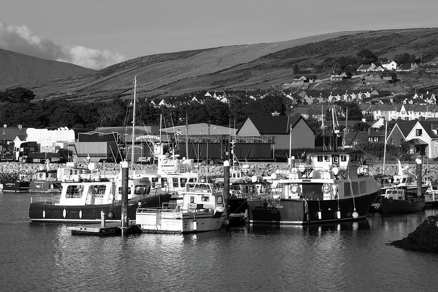 Dingle Harbour  by Aidan Moran