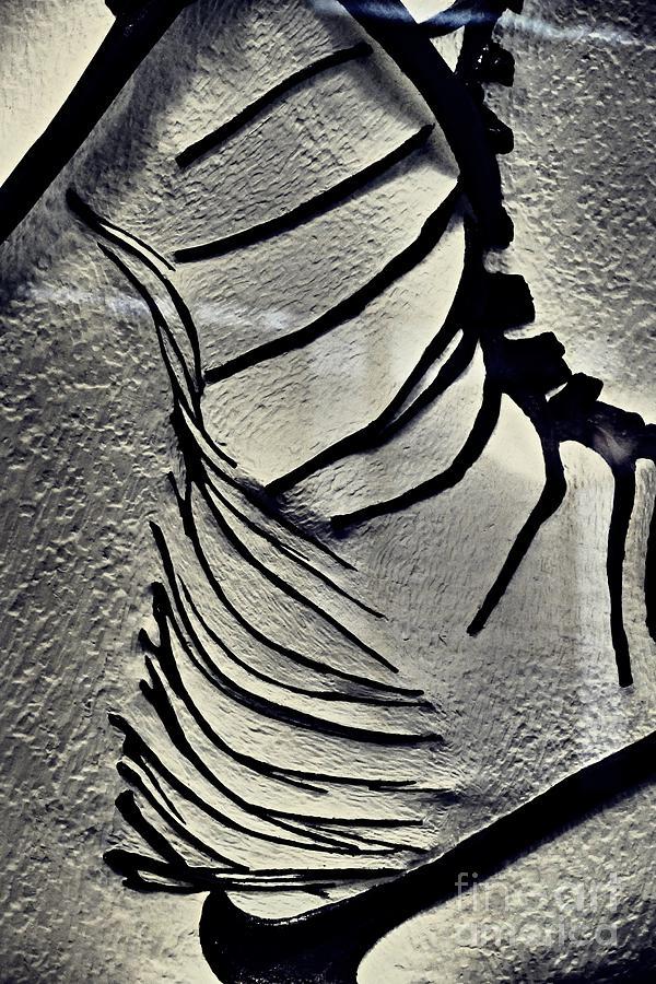 Dinosaur Bone Abstract 1 Photograph