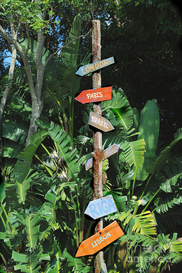 Directional Signage by Diann Fisher
