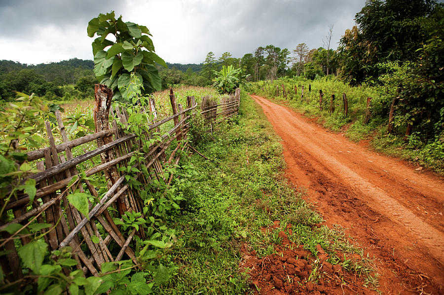 Dirt Road Photograph by Max Paddler