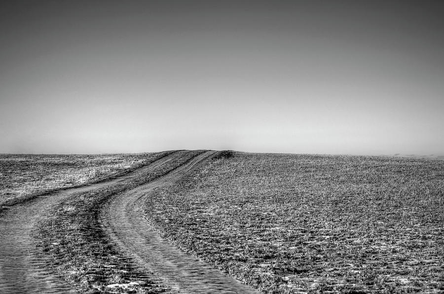 Dirt Road Over Frosted Pasture Photograph by Sindre Ellingsen