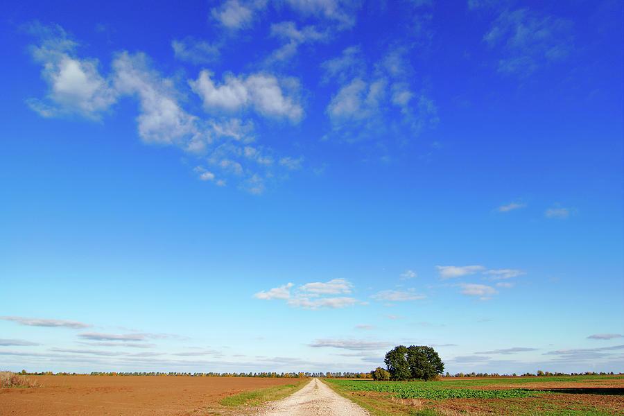 Dirt Road Through Farm Fields Under Photograph by Avtg