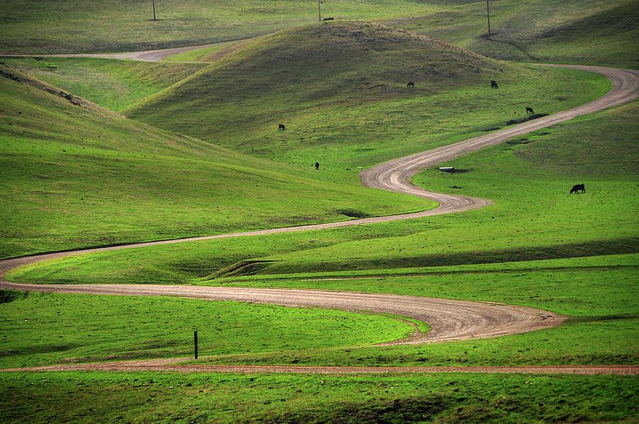 Dirt Road Through Green Hills Photograph by Mitch Diamond