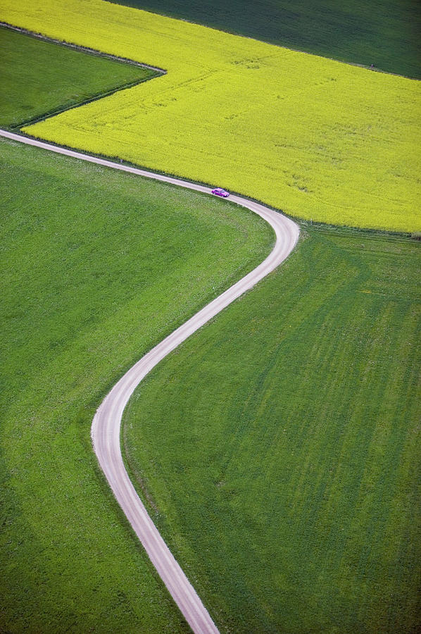 Dirt Track Across Farmland, Aerial View Photograph by Roine Magnusson