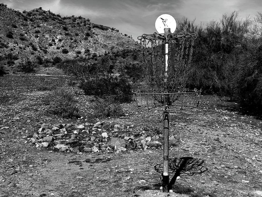 Disc Golf In The Desert Photograph By Andrea Cisneros
