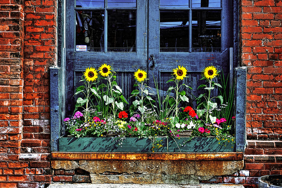 Distillery Flower Box Photograph by Images By Martin Pinker