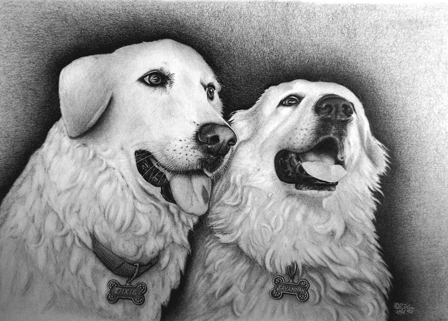 Dixie and Savannah by Danielle R T Haney