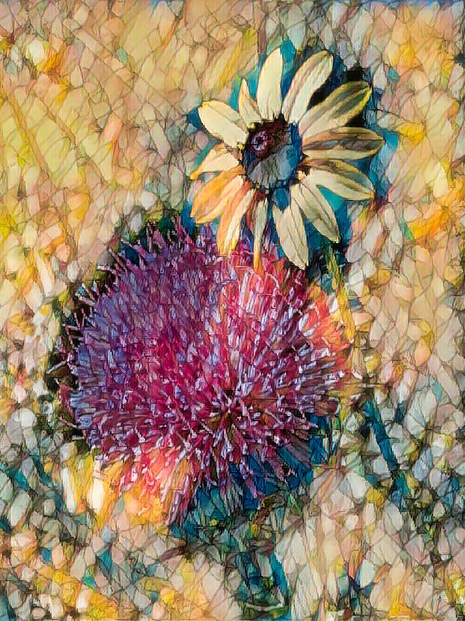 Dizzy Daisy by Rosalie Scanlon