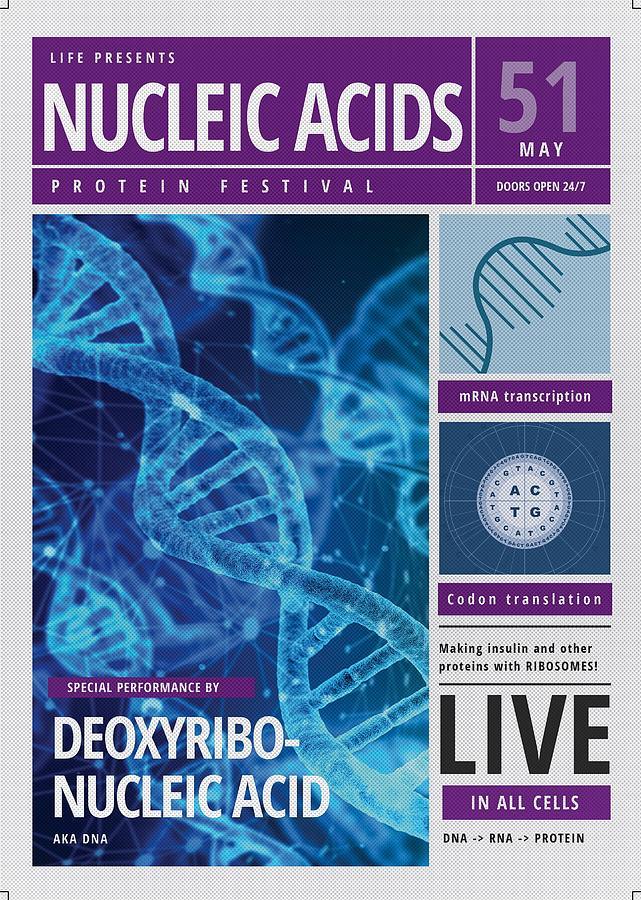 DNA poster by Emily Warren
