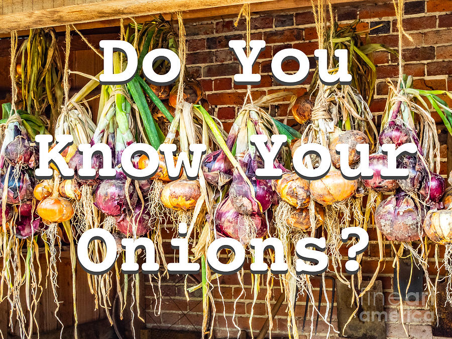 Do you know your onions? by Richard Jemmett