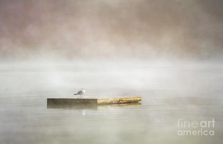 Dock in the Mist by Hal Halli