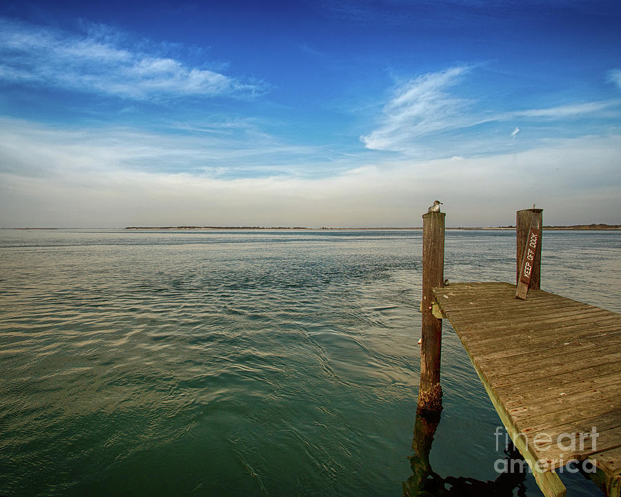 Dock On The Bay by Tom Gari Gallery-Three-Photography
