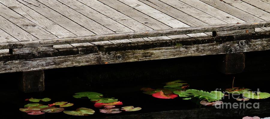 Dock Side Photograph