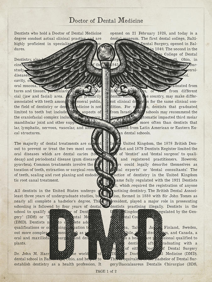 Doctor Of Dental Medicine Gift Idea With Caduceus Illustration 0