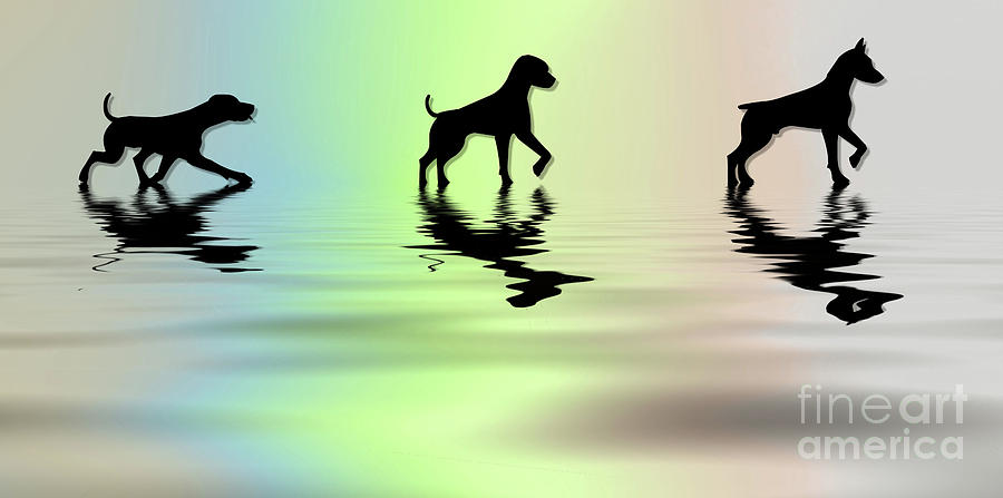 Dogs  by Elaine Manley
