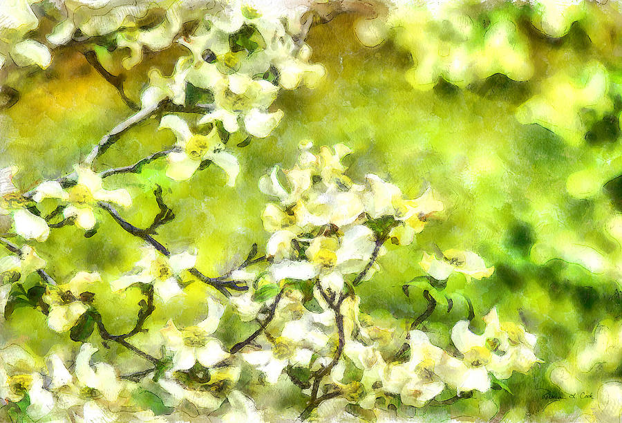 Dogwood Springtime by Bellesouth Studio