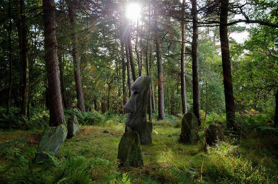 Stone Circle Photograph - Doll Tor And More by Steev Stamford