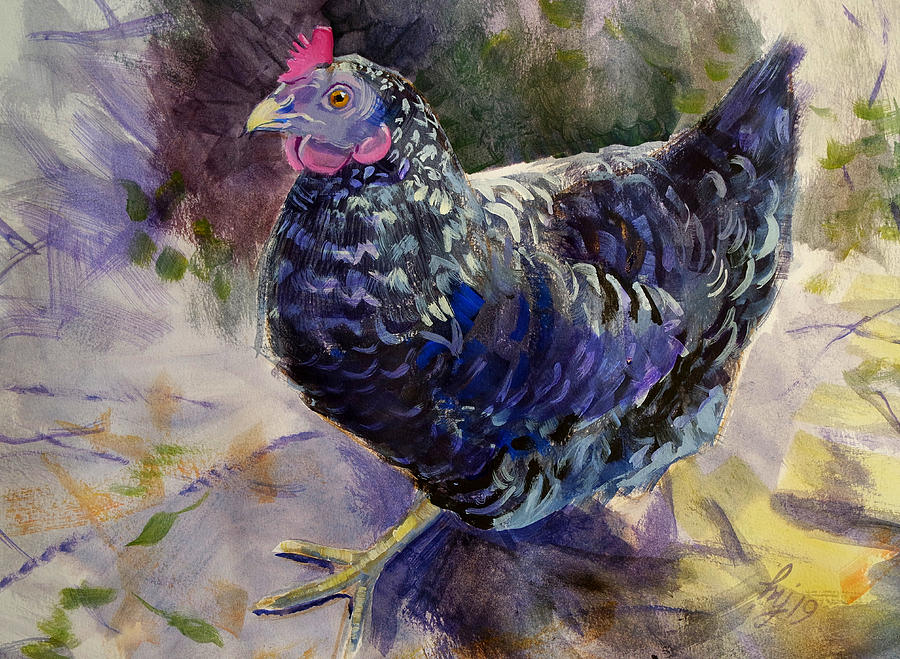 Dominique Dominicker Hen Chicken Pilgrim Fowl Painting by Mike Jory