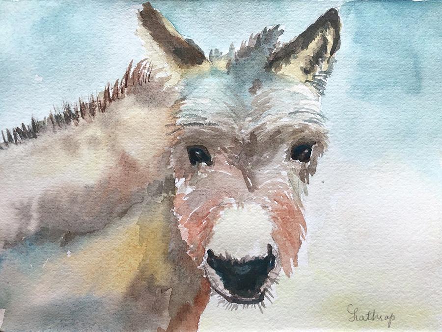 Donkey by Christine Lathrop