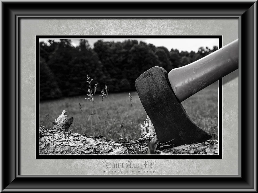 Don't Axe Me BW by Rick Bartrand