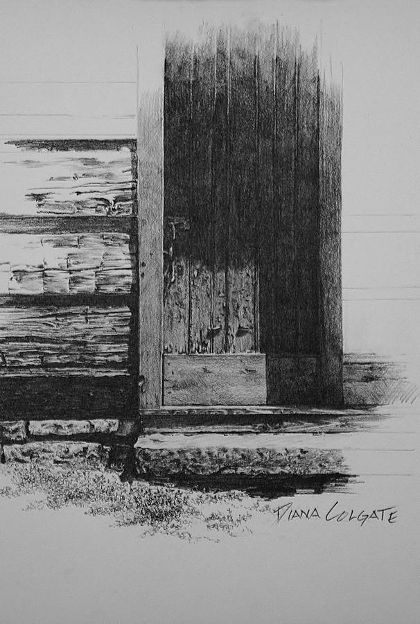 Door To The Past by Diana Colgate