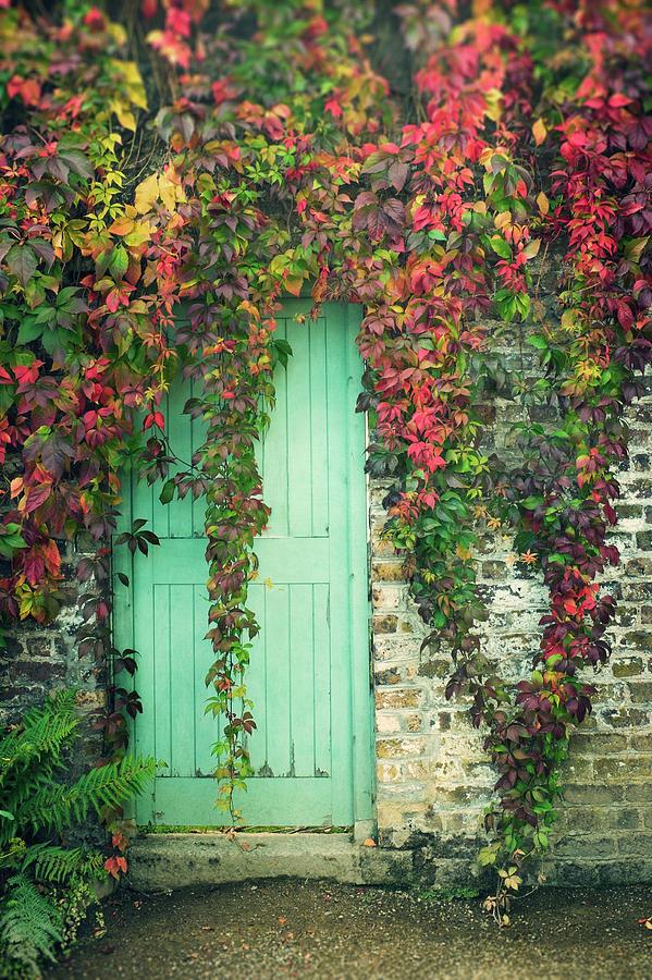 Door To The Secret Garden Photograph by Image By Catherine Macbride