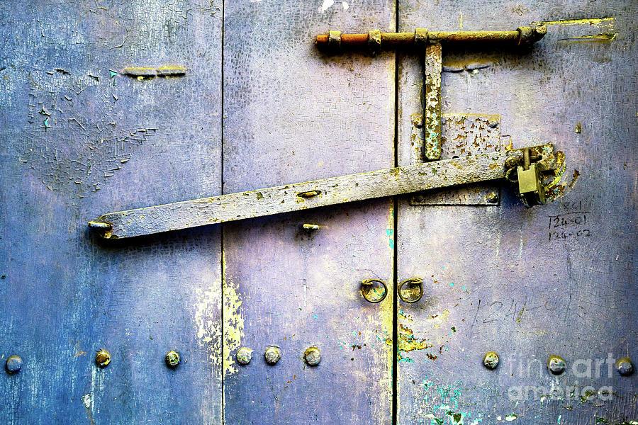 Doors of India - Blue Door Detail 3 by Miles Whittingham