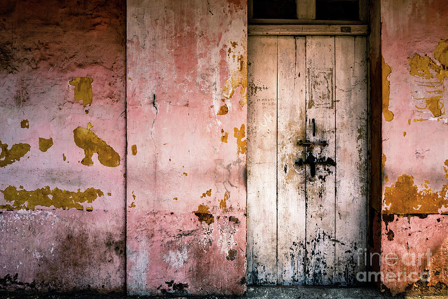 Doors of India - Pink Wall White Door by Miles Whittingham