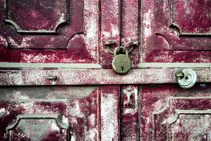 Doors of India - Red Door Detail by Miles Whittingham