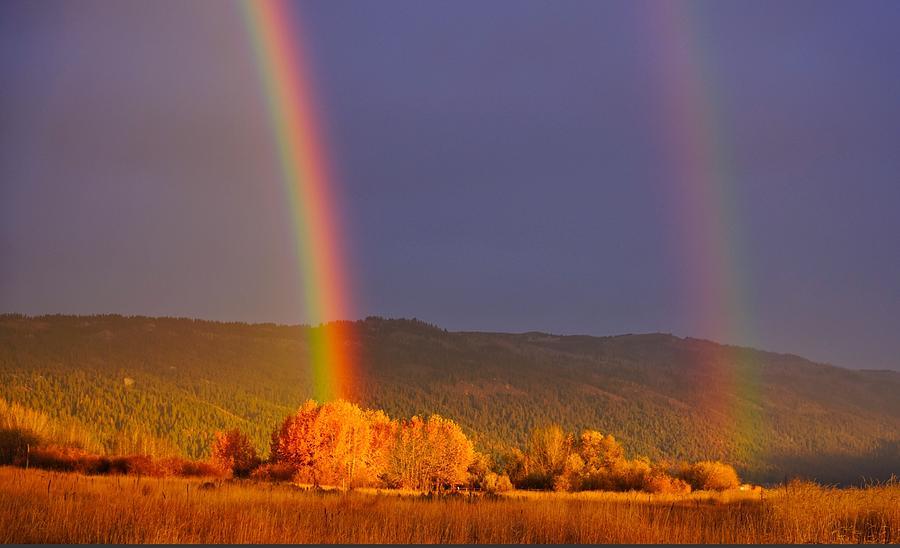 Rainbow Photograph - Double Gold by Tom Gresham