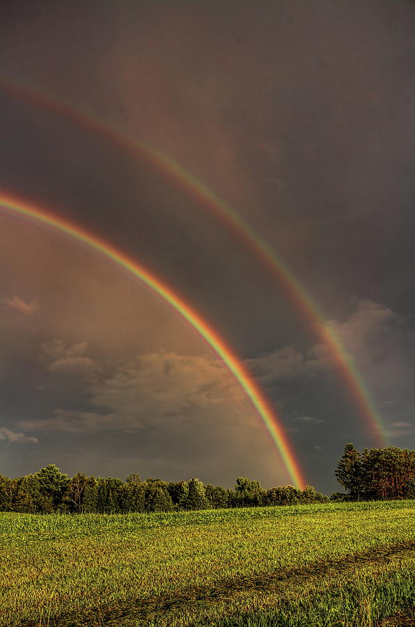 Double Rainbow Over The Hay Field by Dale Kauzlaric