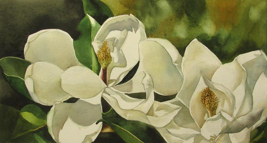 double white magnolia by Alfred Ng