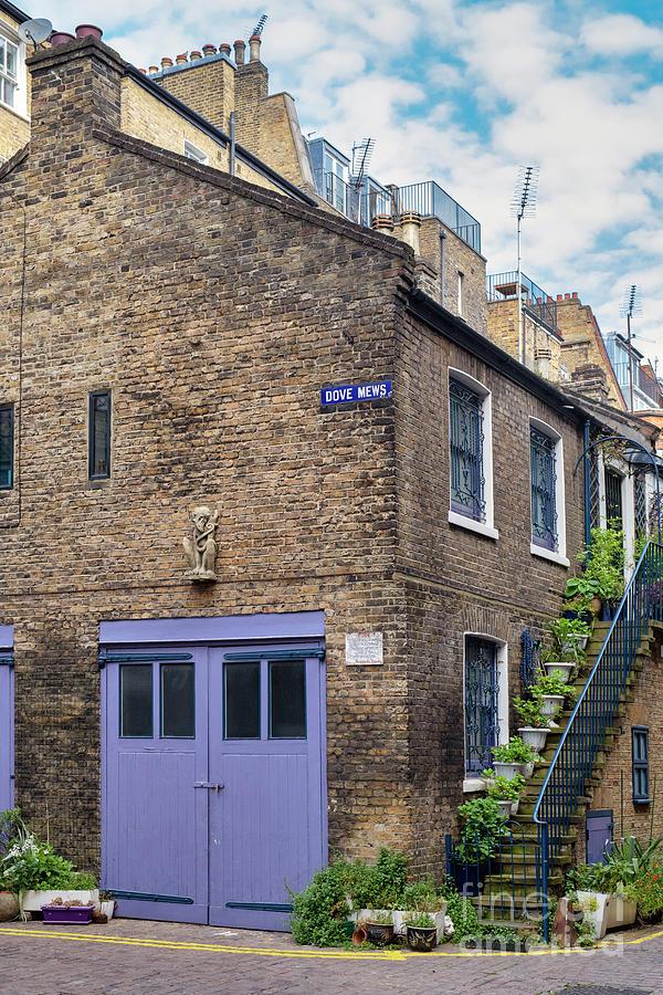 South Kensington Photograph - Dove Mews London by Tim Gainey