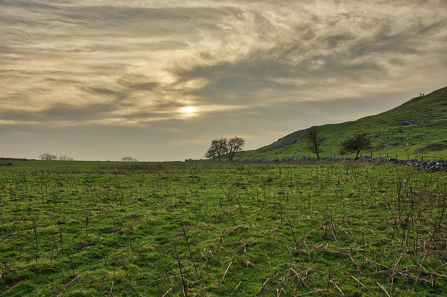 Dovedale Open Field by Scott Lyons