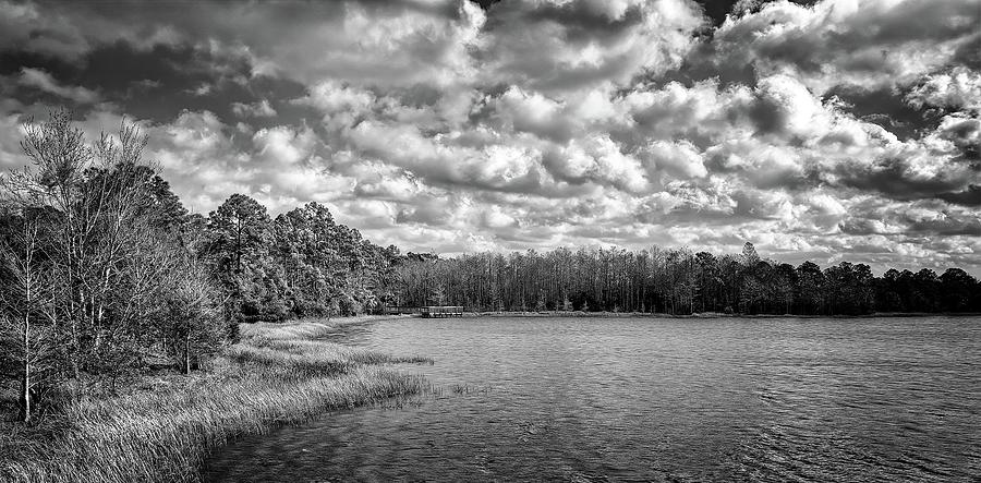 Down By The Lake by Steve DaPonte