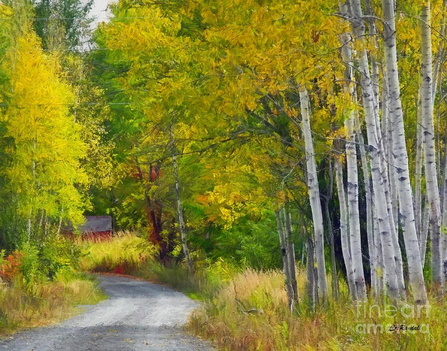 Down Memory Lane by Carol Randall
