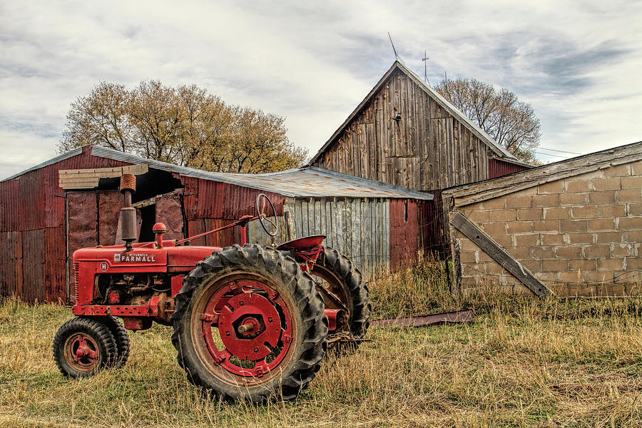Down on the Farm Photograph by Alana Thrower