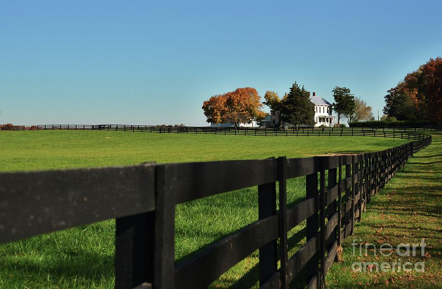 Down on the Farm by Joseph Perno