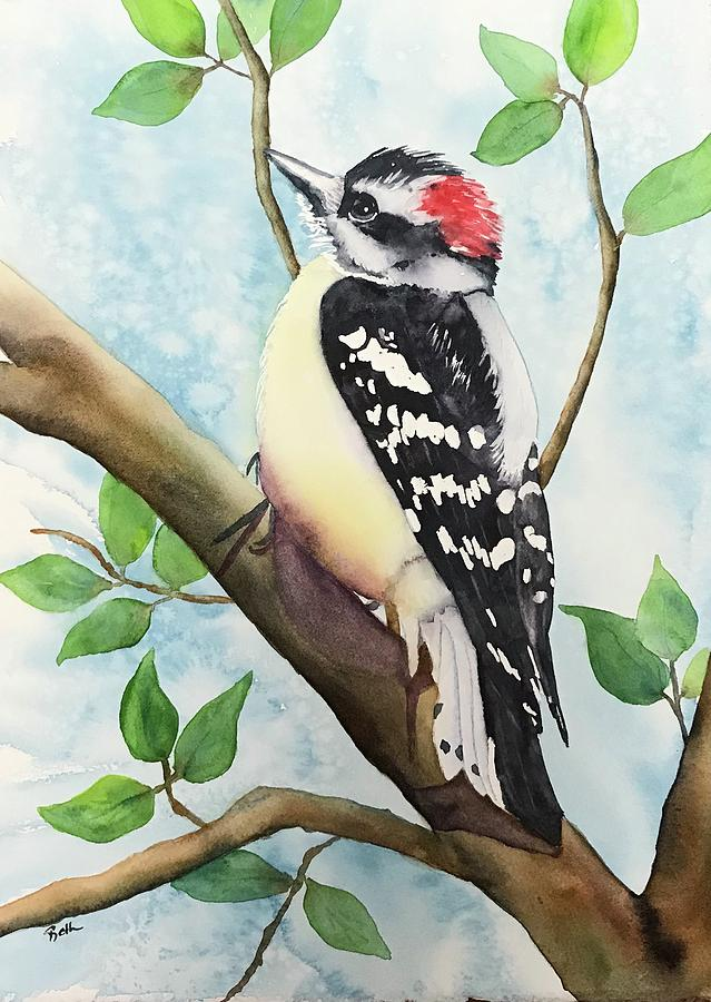 Downy Woodpecker by Beth Fontenot