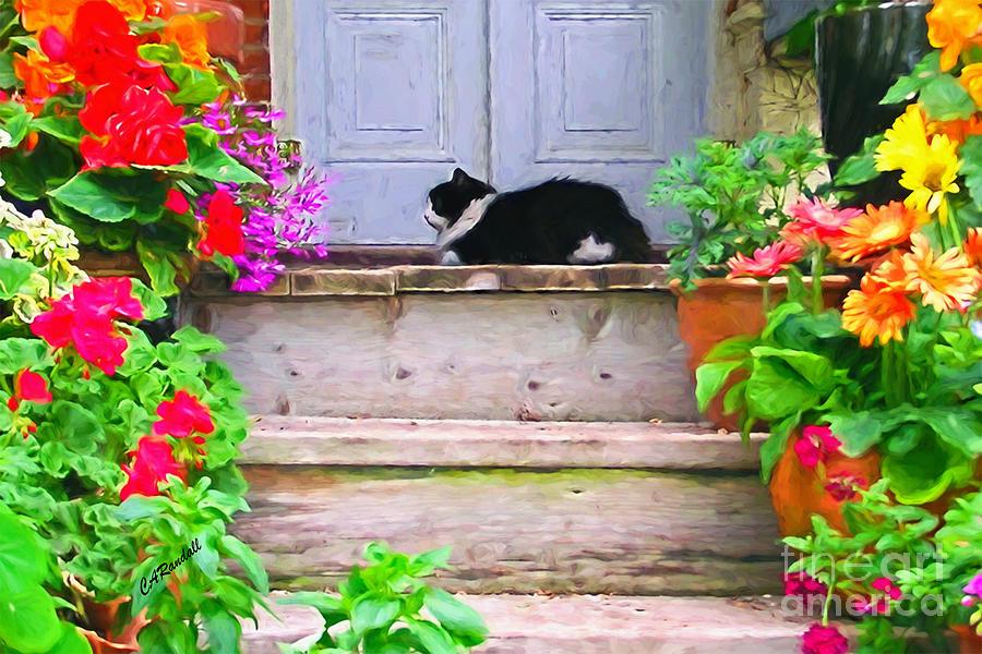 Dozing Gardener by Carol Randall